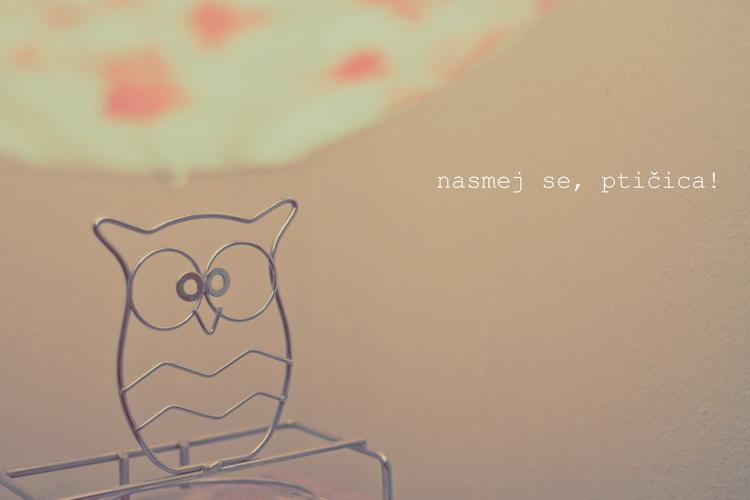 Nasmej_se_Pticica_OPD_91