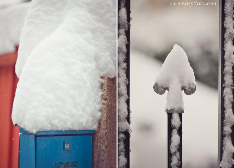 Nasmej_se_Pticica_OPD_94